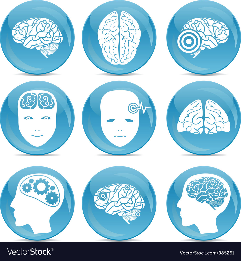 Human brain icons vector | Price: 1 Credit (USD $1)