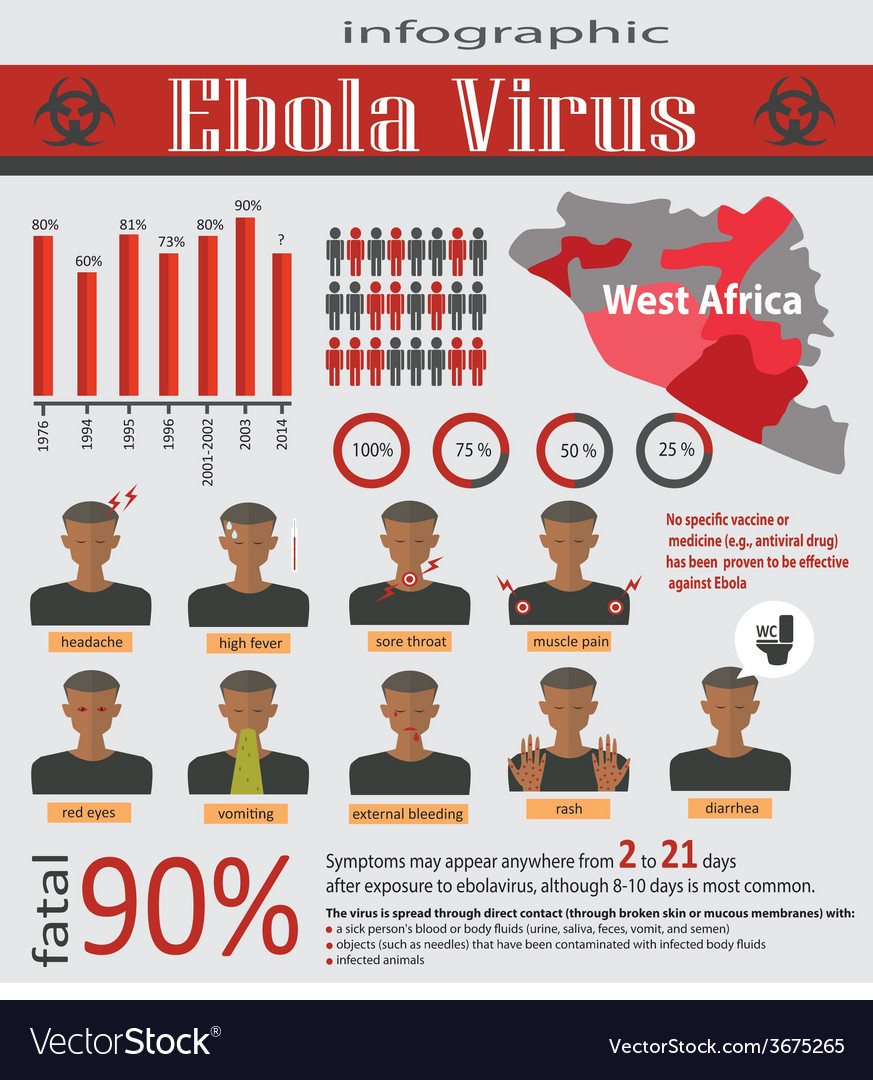 Infographic about deadly ebola virus evd vector | Price: 1 Credit (USD $1)