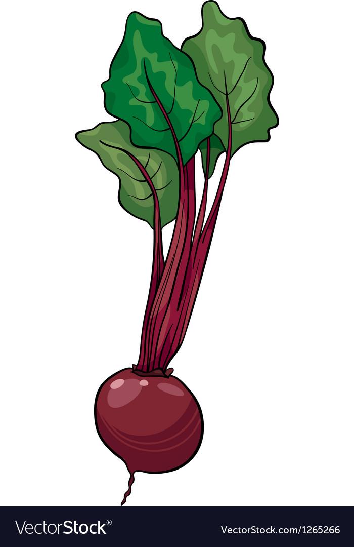 Beet vegetable cartoon vector | Price: 1 Credit (USD $1)