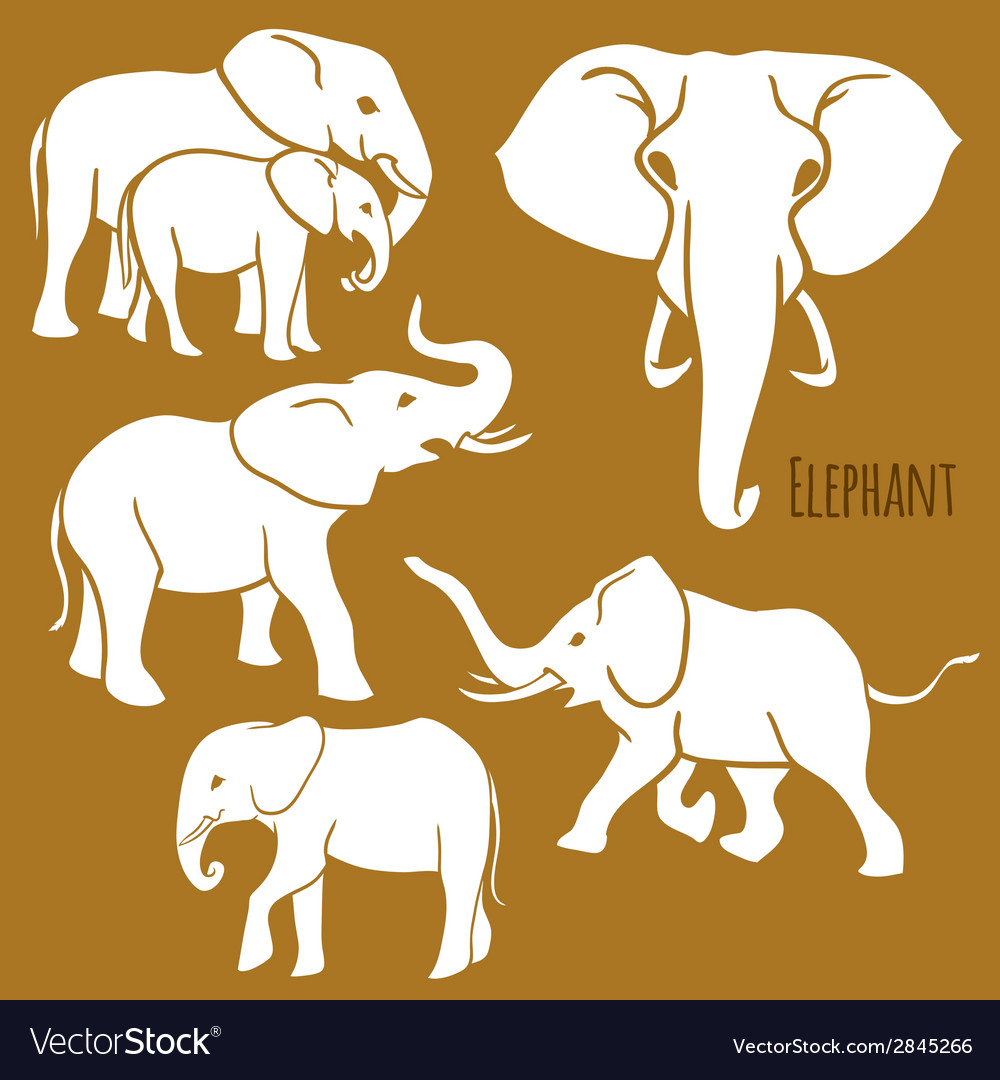 Set of african elephants in various poses vector | Price: 1 Credit (USD $1)
