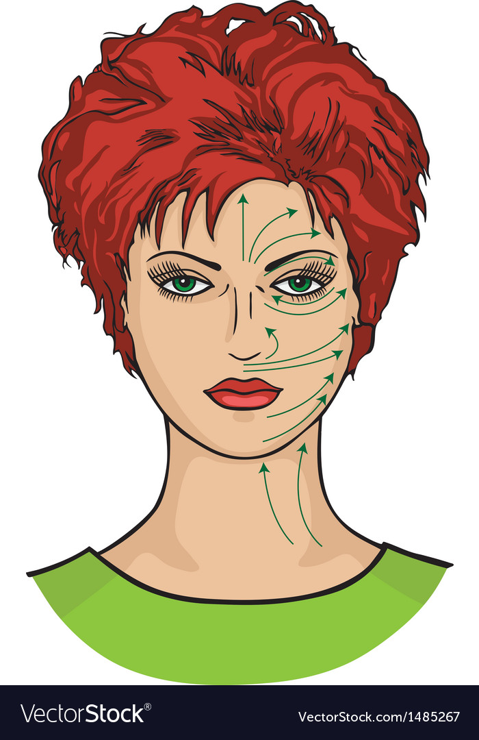Massage lines on woman face vector | Price: 3 Credit (USD $3)