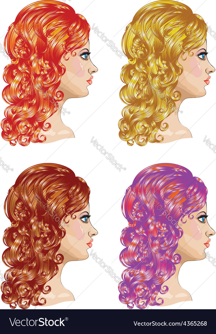 Curly hairstyle2 vector | Price: 1 Credit (USD $1)