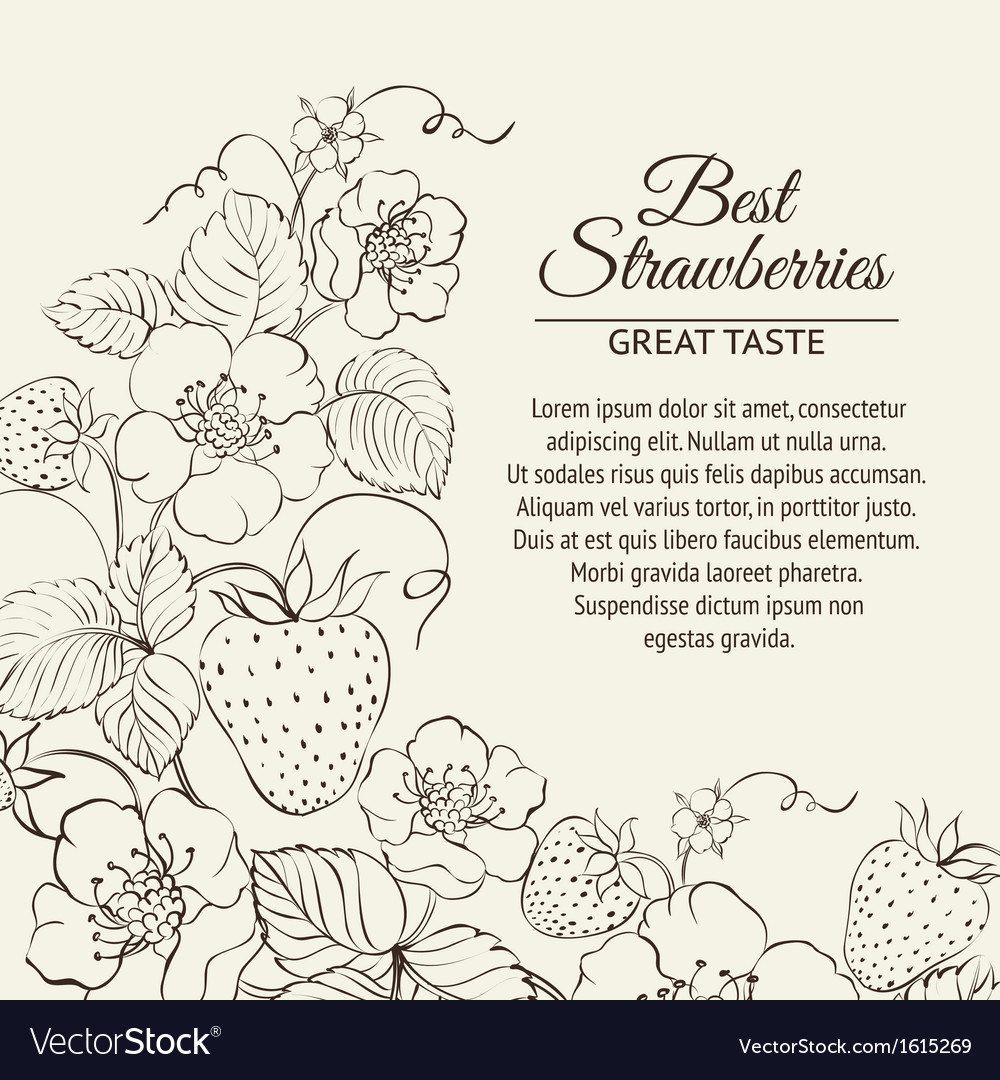 Strawberries brunch vector | Price: 1 Credit (USD $1)