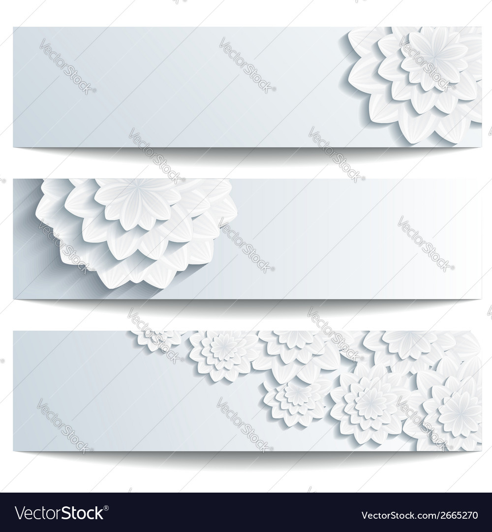 Set of decorative banners with 3d chrysanthemum vector   Price: 1 Credit (USD $1)