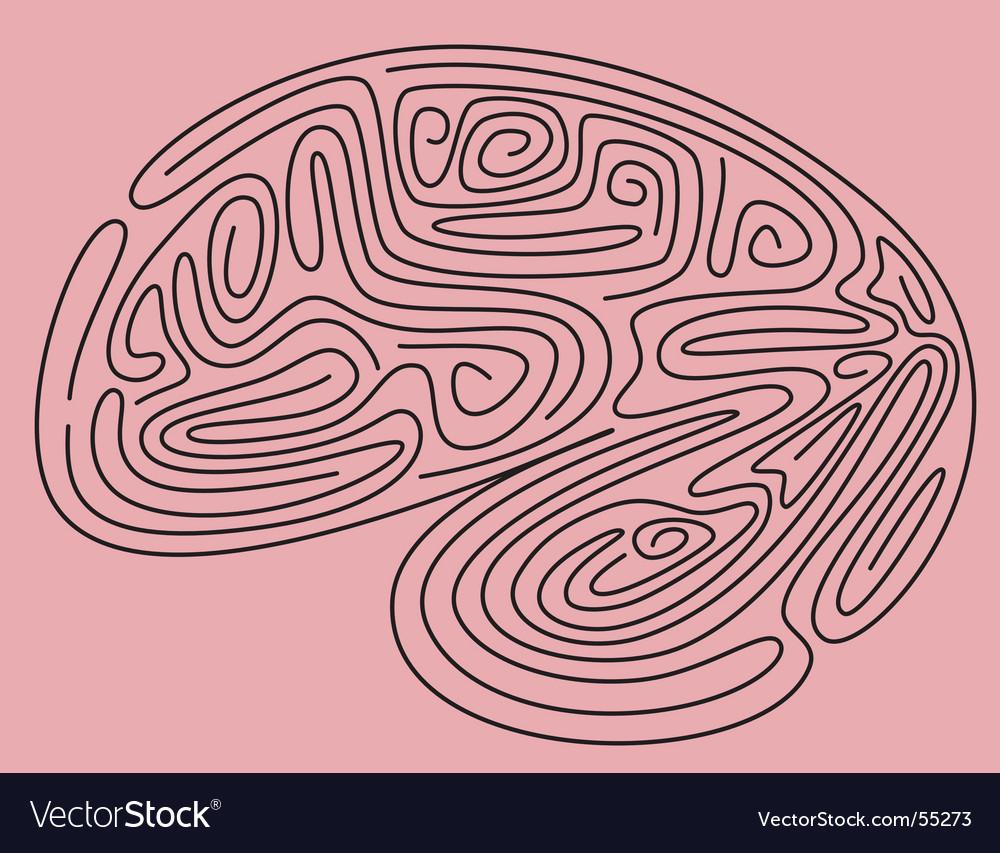 Brain maze vector | Price: 1 Credit (USD $1)