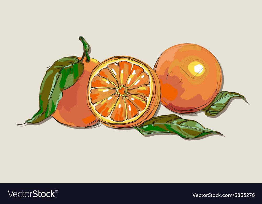 Fresh ripe oranges with leaves vector | Price: 1 Credit (USD $1)
