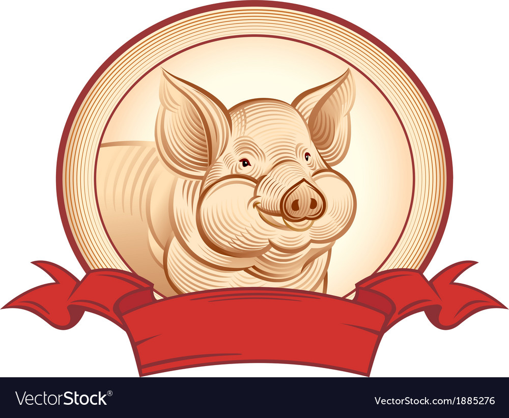 Graphical pig vector | Price: 1 Credit (USD $1)