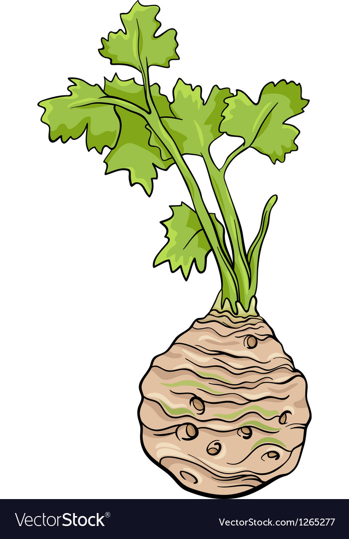 Celery vegetable cartoon vector | Price: 1 Credit (USD $1)