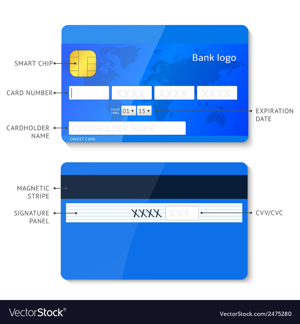 Credit card infographic vector | Price: 1 Credit (USD $1)