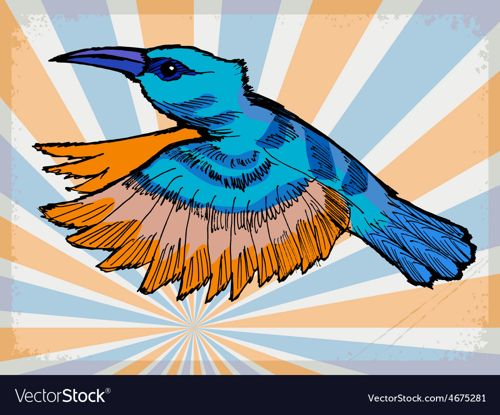 Background with hummingbird vector   Price: 1 Credit (USD $1)