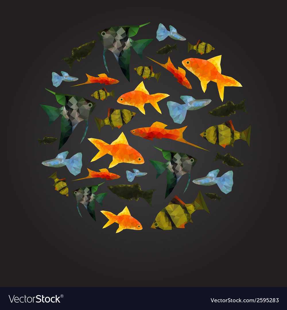 Colorful aquarium fishes isolated polygonal vector | Price: 1 Credit (USD $1)