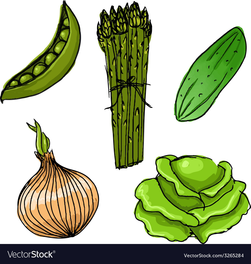 Set of five cute hand drawn vegetables vector | Price: 1 Credit (USD $1)