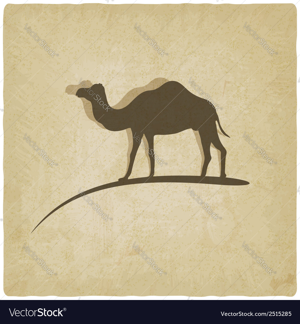 Camel old background vector | Price: 1 Credit (USD $1)