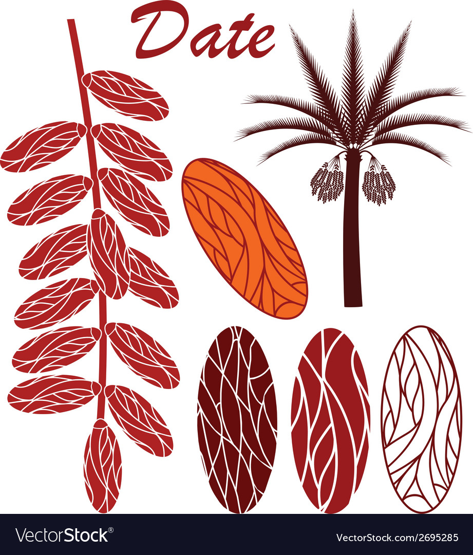 Date vector | Price: 1 Credit (USD $1)