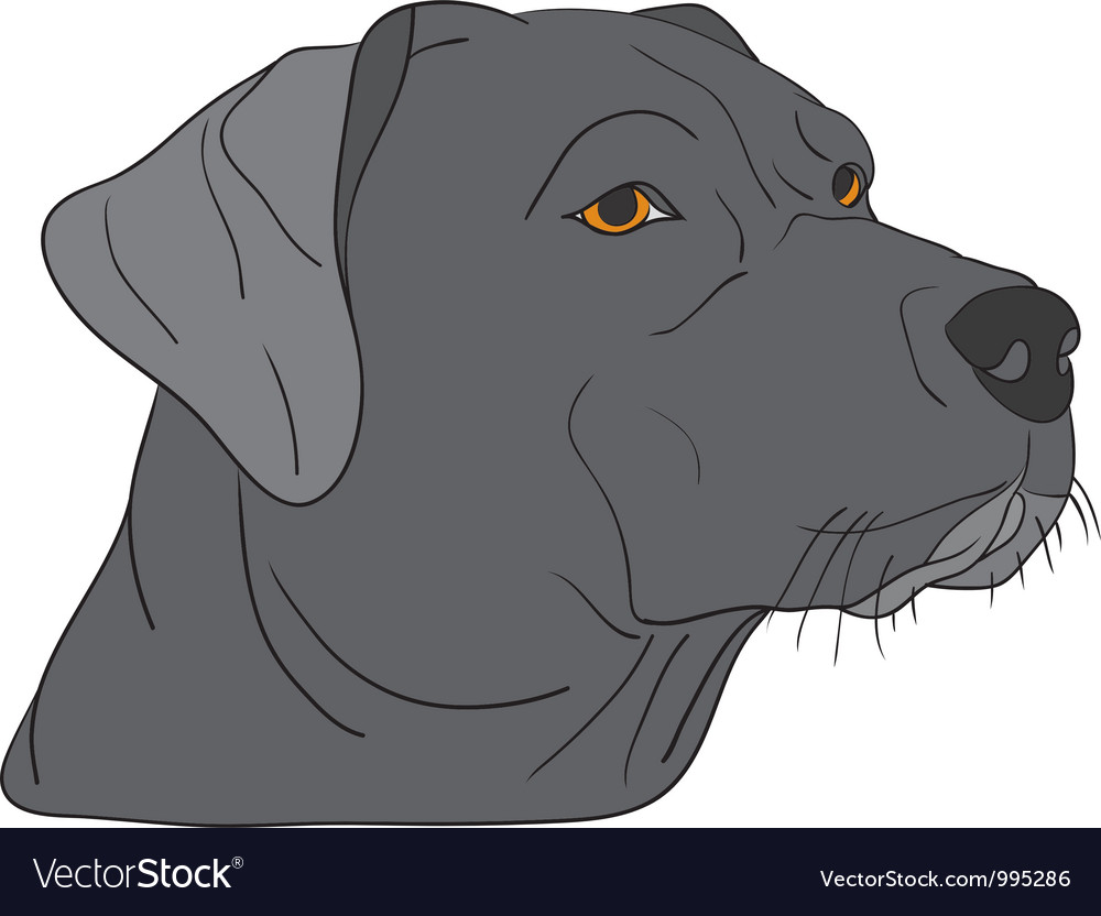 Dog head vector | Price: 1 Credit (USD $1)