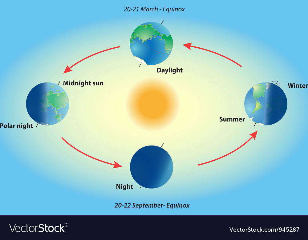 Season on planet earth vector | Price: 1 Credit (USD $1)