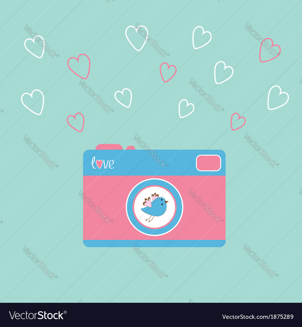 Photocamera bird vector | Price: 1 Credit (USD $1)