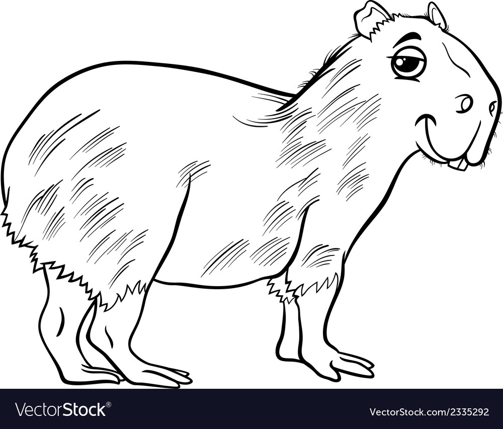 Capybara animal cartoon coloring page vector | Price: 1 Credit (USD $1)