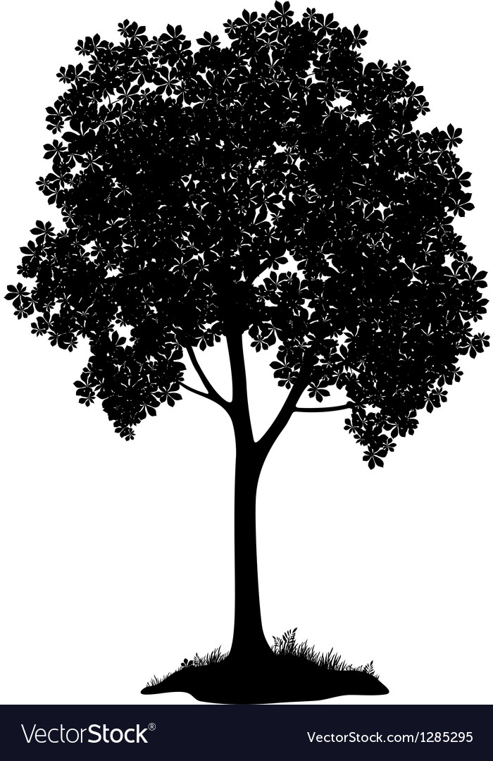 Chestnut tree silhouette vector | Price: 1 Credit (USD $1)