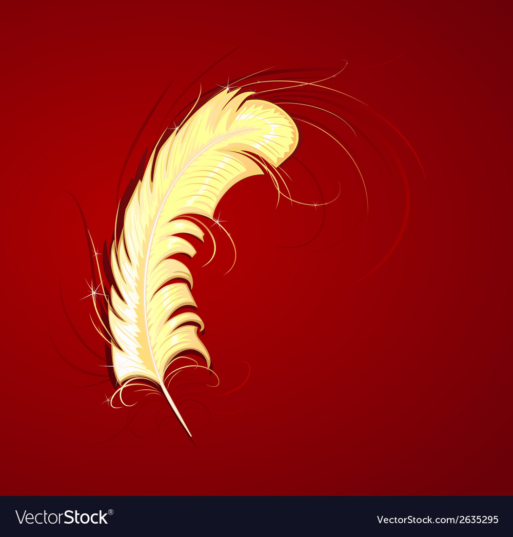 Gold feather vector | Price: 1 Credit (USD $1)