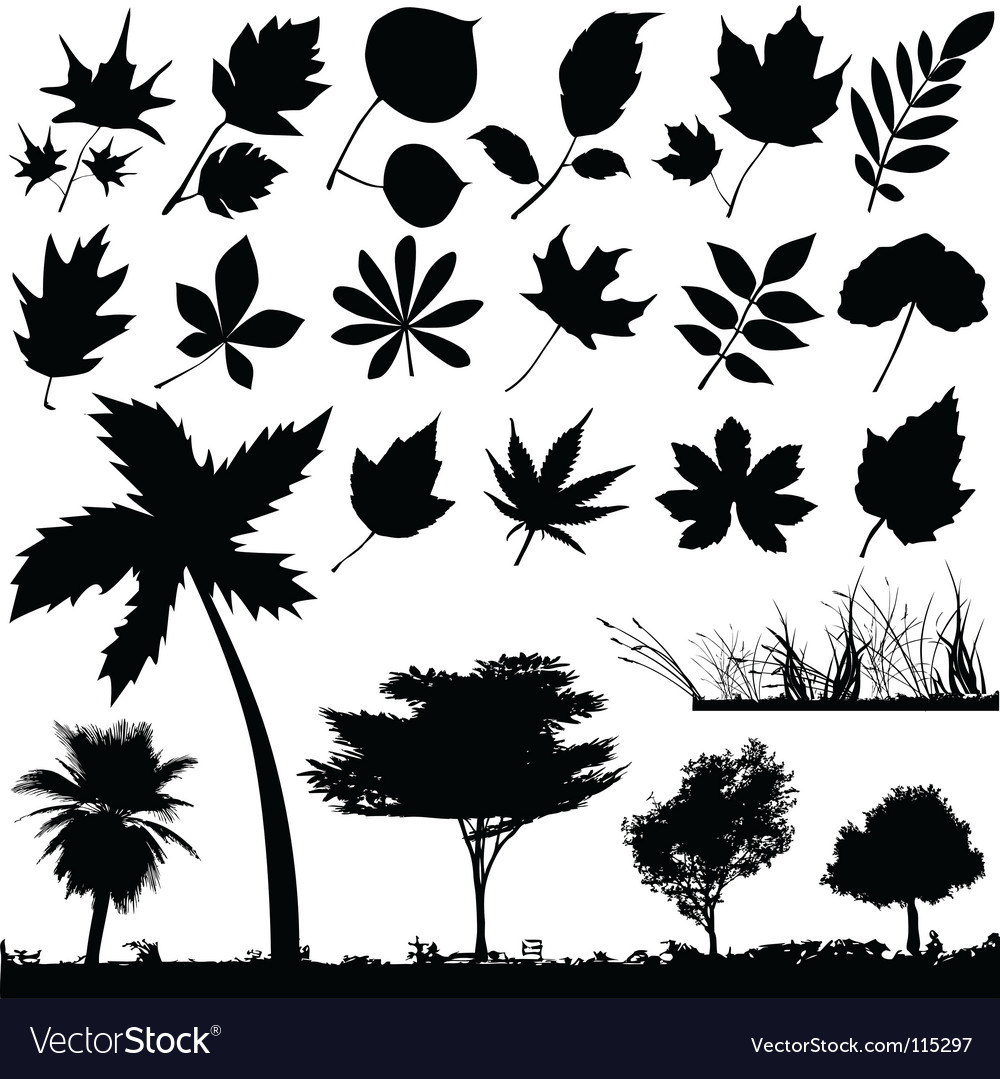 Flower leaf and trees vector | Price: 1 Credit (USD $1)