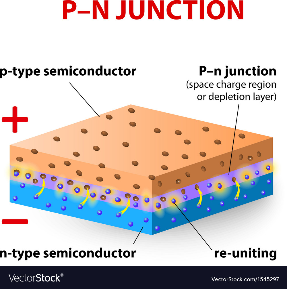 P-n junction vector | Price: 1 Credit (USD $1)