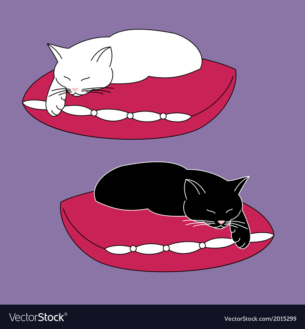 Cats on pillows vector | Price: 1 Credit (USD $1)