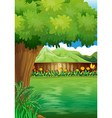 A clean fenced backyard with plants vector