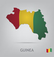 Guinea vector