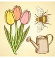 Sketch tulip bee and watering can vector