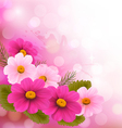 Holiday background with three pink flowers vector
