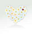 Heart is made of white daisies - valentines day vector
