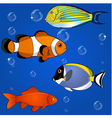 Tropical fish set vector