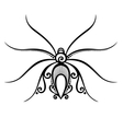 Beautiful spider exotic insect vector