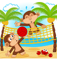 Monkeys playing in beach volleyball vector