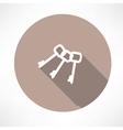 Keys icon vector