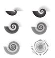 Shell swirl vector