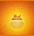 Beer with condensed water pearls vector