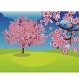 Blooming sakura tree on lawn vector
