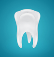 Human teeth on blue background vector