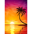 Sunset sunrise with palm tree vector