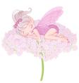 Sleeping pixy fairy vector