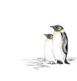 Penguins hand drawn vector