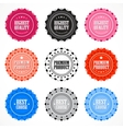 Collection of premium quality badges vector