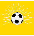 Football soccer ball with sunlight effect flat vector