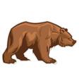 Brown bear mascot vector