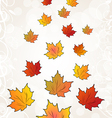 Flying autumn orange maple leaves vector