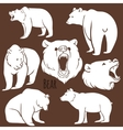Set of wild bear silhouettes on the background vector