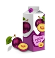 Juice pack plum vector