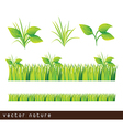 Leaves and grass vector